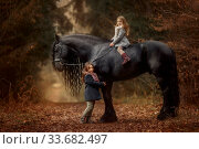Little sisters with friesian horse autumn forest. Стоковое фото, фотограф Julia Shepeleva / Фотобанк Лори