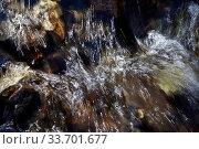 Detailaufnahme von fliessendem Wasser, Sonnenrefelexe zeichnen die Stroemungsrichtung des Wassers nach, Stora Sandfell, Ostisland, Island. Стоковое фото, фотограф Zoonar.com/Stefan Ziese / age Fotostock / Фотобанк Лори