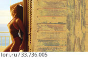 Купить «Sexy woman wear bikini posing leaned on wooden background», фото № 33736005, снято 27 мая 2020 г. (c) Alexander Tihonovs / Фотобанк Лори