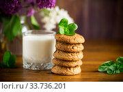 Купить «oatmeal cookies with a glass of fresh milk for breakfast», фото № 33736201, снято 12 мая 2020 г. (c) Peredniankina / Фотобанк Лори