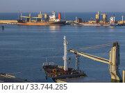 Купить «Docked cement hauling cargo ships equipped with loading cranes in Ashdod Port, Israel.», фото № 33744285, снято 2 октября 2019 г. (c) age Fotostock / Фотобанк Лори