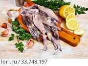 Raw calamari on wooden table. Стоковое фото, фотограф Яков Филимонов / Фотобанк Лори