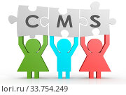 Купить «CMS - Content Management System puzzle in a line image with hi-res rendered artwork that could be used for any graphic design.», фото № 33754249, снято 5 июня 2020 г. (c) age Fotostock / Фотобанк Лори