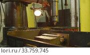 Купить «Caucasian male hands factory worker at a factory standing at a workbench and operating a machinery», видеоролик № 33759745, снято 23 ноября 2019 г. (c) Wavebreak Media / Фотобанк Лори