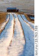 Купить «Prairie Landscape Winter Saskatchewan Canada evening light», фото № 33763189, снято 1 июня 2020 г. (c) age Fotostock / Фотобанк Лори