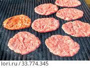 Купить «Appetizing pieces of grilled meat cooked on the grill», фото № 33774345, снято 5 октября 2019 г. (c) FotograFF / Фотобанк Лори