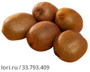 Купить «Pile of kiwifruits», фото № 33793409, снято 5 июля 2020 г. (c) Яков Филимонов / Фотобанк Лори