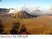 Купить «Vulcanos in caldera and trees, Java, Indonesia», фото № 33795025, снято 16 июля 2020 г. (c) age Fotostock / Фотобанк Лори