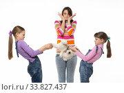 Купить «Дети не могут поделить мягкую игрушку, мама в шоке», фото № 33827437, снято 15 мая 2020 г. (c) Иванов Алексей / Фотобанк Лори