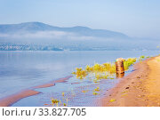 Купить «iron barrel with garbage stands on the banks of the river in the morning sunny day», фото № 33827705, снято 22 августа 2019 г. (c) Акиньшин Владимир / Фотобанк Лори