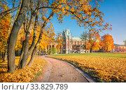 Купить «Дворец Царицыно и осень», фото № 33829789, снято 15 октября 2018 г. (c) Baturina Yuliya / Фотобанк Лори