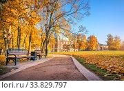 Купить «Скамейка у Дворца Царицыно осенним утром», фото № 33829797, снято 15 октября 2018 г. (c) Baturina Yuliya / Фотобанк Лори