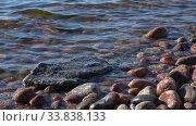 Прибрежные камни солнечным вечером. Южный берег Финского залива. Ленинградская область, Россия. Стоковое видео, видеограф Виктор Карасев / Фотобанк Лори