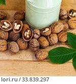 Купить «Walnuts and leaves», фото № 33839297, снято 11 мая 2020 г. (c) Елена Блохина / Фотобанк Лори