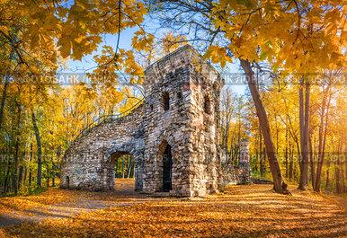 Башня-Руина в парке Царицыно  в Москве и золотые осенние деревья