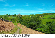 Купить «A narrow walking path on high moorland surrounded by pasture with stone walls above crimsworth dean valley in west yorkshire», фото № 33871309, снято 30 мая 2020 г. (c) easy Fotostock / Фотобанк Лори