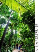 England, London, Richmond, Royal Botanic Gardens Kew, Visitors Walking in The Palm House. Стоковое фото, фотограф Steve Vidler / age Fotostock / Фотобанк Лори