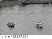 Купить «Катера водной полиции и спасательной службы на водных объектах МЧС России на Москве-реке», фото № 33887601, снято 9 мая 2020 г. (c) Free Wind / Фотобанк Лори