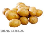 Купить «Pile of raw potatoes», фото № 33888009, снято 5 июля 2020 г. (c) Яков Филимонов / Фотобанк Лори