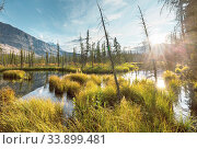 Купить «Beautiful autumn season in Canadian mountains. Fall background.», фото № 33899481, снято 2 июня 2020 г. (c) easy Fotostock / Фотобанк Лори