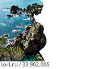 Купить «Double multiple exposure. Silhouette of pregnant woman combined with a rocky coast and turquoise sea waters», фото № 33902005, снято 14 июля 2020 г. (c) Alexander Tihonovs / Фотобанк Лори