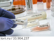 Several vials with soluble protease proteins for activation of the coronavirus severe acute respiratory syndrome (SARS) trypsin-like protein in human respiratory tract in a hospital, Spain. Стоковое фото, фотограф Felipe Caparrós / age Fotostock / Фотобанк Лори