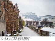 Views to hohensalzburg fortress from mirabell gardens at (2018 год). Редакционное фото, фотограф Nataliia Zhekova / Фотобанк Лори