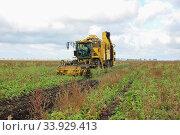 Купить «Beet harvesters in the process», фото № 33929413, снято 19 октября 2012 г. (c) Nataliia Zhekova / Фотобанк Лори