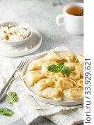 Dumplings, filled with cottage cheese. Russian, Ukrainian or Polish dish varenyky, vareniki, pierogi, pyrohy. Стоковое фото, фотограф Nataliia Zhekova / Фотобанк Лори