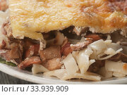 Запеканка с грибами, макаронами и сыром. Стоковое фото, фотограф Александр Курлович / Фотобанк Лори
