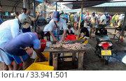 Продажа креветок на рыбном рынке Негомбо. Шри-Ланка. Редакционное видео, видеограф Виктор Карасев / Фотобанк Лори