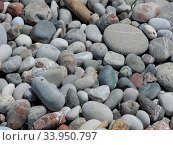Steine am Strand Stones on the beach. Стоковое фото, фотограф Zoonar.com/ulf neugebauer / easy Fotostock / Фотобанк Лори