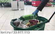 Покупатель в резиновых перчатках складывает продукты в зеленую корзинку в супермаркете Окей. Редакционное видео, видеограф Кекяляйнен Андрей / Фотобанк Лори