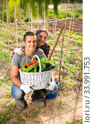 Couple of successful gardeners with basket of vegetables. Стоковое фото, фотограф Яков Филимонов / Фотобанк Лори