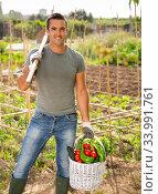 Cheerful man with harvest of vegetables at smallholding. Стоковое фото, фотограф Яков Филимонов / Фотобанк Лори