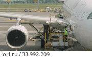 Купить «Uploading cargo onboard the aircraft», видеоролик № 33992209, снято 14 ноября 2018 г. (c) Игорь Жоров / Фотобанк Лори