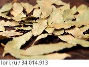 Купить «Bay laurel leaves on a wooden board. Spices», фото № 34014913, снято 6 июля 2020 г. (c) easy Fotostock / Фотобанк Лори