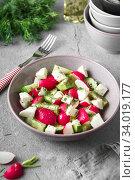 Купить «Radish, cucumber, kiwi, cheese and dill salad in a bowl on gray grunge concrete background. Seasonal Cooking, food styling.», фото № 34019177, снято 11 апреля 2019 г. (c) Nataliia Zhekova / Фотобанк Лори