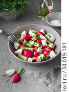 Купить «Radish, cucumber, kiwi, cheese and dill salad in a bowl on gray grunge concrete background. Seasonal Cooking, food styling.», фото № 34019181, снято 11 апреля 2019 г. (c) Nataliia Zhekova / Фотобанк Лори