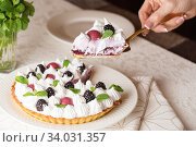 Купить «Beautiful freshly made berry meringue tart decorated with mint leaves on plate. Stunning Blackberry meringue pie still life composition. Food photography.», фото № 34031357, снято 9 февраля 2019 г. (c) Nataliia Zhekova / Фотобанк Лори
