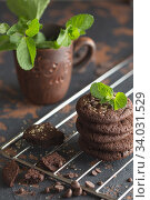 Купить «Chocolate cookies on the baking rack. Dark and Moody», фото № 34031529, снято 4 февраля 2019 г. (c) Nataliia Zhekova / Фотобанк Лори