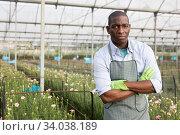 Купить «Portrait of african-american florist in orangery», фото № 34038189, снято 14 августа 2019 г. (c) Яков Филимонов / Фотобанк Лори