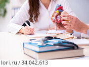Young male doctor cardiologist and female student in the classro. Стоковое фото, фотограф Elnur / Фотобанк Лори