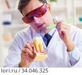 Купить «Young dentist working in the dentistry hospital», фото № 34046325, снято 5 февраля 2018 г. (c) Elnur / Фотобанк Лори