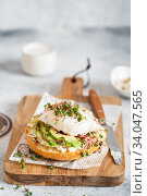 Poached egg with avocado, ricotta cheese and radish sprouts on burger bun. Healthy sandwich with bread, fresh avocado, poached egg and cheese garnished with radish microgreens. Healthy eating. Стоковое фото, фотограф Nataliia Zhekova / Фотобанк Лори