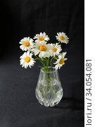 Купить «Bouquet of daisy flowers in a glass vase on a dark background», фото № 34054081, снято 20 июня 2020 г. (c) Яна Королёва / Фотобанк Лори