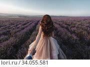 backside Portrait of a bride in fashion dress in a lavender field, follow me photo. Стоковое фото, фотограф Юрий Голяк / Фотобанк Лори