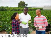 Купить «Cheerful farmers discussing during break on field», фото № 34056645, снято 3 июля 2020 г. (c) Яков Филимонов / Фотобанк Лори