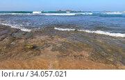 Купить «У кораллового рифа Хиккадува солнечным днем. Шри-Ланка», видеоролик № 34057021, снято 20 февраля 2020 г. (c) Виктор Карасев / Фотобанк Лори