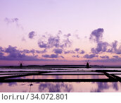 Купить «The Saline di Trapani Nature Reserve is one of the most important coastal wetlands in western Sicily, occupied largely by traditionally cultivated salt...», фото № 34072801, снято 15 марта 2007 г. (c) age Fotostock / Фотобанк Лори